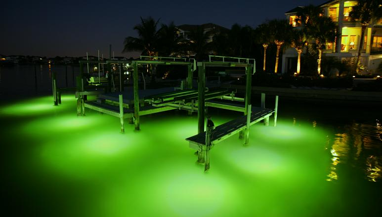 1750w Fish Attracting Lights Green Fish Attracting Dock